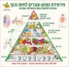 עבודה אקדמית +פוסטר: טבעונות נוער מוסר תזונה אורח חיים בריא